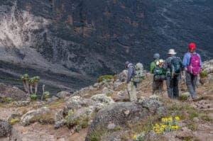 """Efter morgenmaden fortsætter du opad.   Stien integrerer nu med Mweka-ruten, som er den vi tager, når vi skal ned ad bjerget igen.  Under vandringen ankommer du til Barafu Hut, som er det sidste vandstop på ruten, da der ikke er noget vand i Barafu Camp, som er dagens destination.   Ordet """"barafu"""" betyder """"is"""" på Swahili, og campen er placeret på en stenet bjergryg.   Teltene bliver her udsat for sten og vind, og det er vigtigt, at man lærer campen at kende, inden det bliver mørkt.   Aftensmaden bliver serveret tidligt, så der er mulighed for at slappe af og sove, inden vi – ved midnat – bevæger os mod toppen af Kilimanjaro.   Vi anbefaler, at man går i seng senest kl. 19:00."""