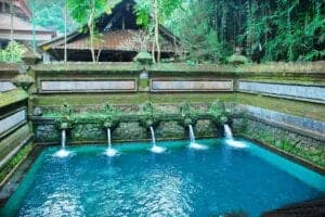 Du befinder dig på Bali, som også kaldes guds ø. De balinesiske folk er meget reli-giøse, og gør meget ud af at bevare øens og folkets kultur og traditioner.  På dag 2 får du lov til at  opleve den balinesiske spiritualitet i den lokale  by, Sebatu.   Med bil forlader vi hotellet, og sætter  kurs mod det charmerende område Sebatu, som huser flere forskellige templer, der stadig bliver besøgt  den dag i dag.  Her vil vores lokalguide vise dig rundt og fortælle om bygningerne, og om hvorfor  de stadig spiller en religiøs rolle for de lokale den dag i dag.  Efter en guidet rundtur, bevæger vi os opad og dybere ind i byen, hvor vi finder områdets hellige vand.   Her vil lokalguiden hjælpe dig med at tage en balinesisk sarong på og vise dig,  hvordan man beder til guderne.  Herefter er det tid til at tage en dukkert i det hellige vand – noget, der betragtes som et vigtigt renselsesritual.  Efterfølgende spiser vi frokost på en lokal restaurant, og besøger en smuk  Tegalalang-risterrasse, inden  vi vender tilbage til hotellet.