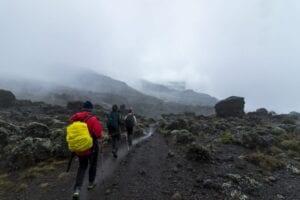 """Mandara Hut – Horombo Hut Efter morgenmaden bevæger vi os ud af regnskoven og fortsætter i hedelandskab. Vi passerer Moundi-krateret, hvor du får mulighed for at vandre op og nyde en enestående udsigt udover Kibo-krateret.   Ude på heden vil du opleve eksotiske planter, såsom """"giant lobelia"""" og """"giant groundsel"""".   Efter ca. 6 timers vandring når vi frem til Horombu Hut, som er placeret på et mindre plateau.   Også i dag forbereder vores kok og portører både drikkevand og vand til at vaske os i.   Der bliver serveret både snacks og god aftensmad.  I nat skal du være forberedt på, at det bliver koldt, da temperaturen falder til under frysepunktet."""