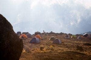 Du fortsætter langs stien, der så småt fører dig ud af skoven og ud på savannen. Her er der højt græs, enge og vulkanske sten draperet i mos.   Du vandrer videre gennem de frodige bølgende bakker, krydser vandløb og ankommer så til Shira Ridge.   Herfra bevæger du dig stille og roligt ned til Shira 1 Campen.   Her har du en fantastisk udsigt hen over plateauet til Kilimanjaros tinde: Kibo.
