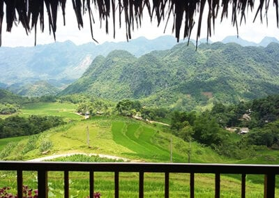 review-puluong-retreat-homestay-naturereserve-tripadvisors