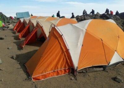 Bestig Kilimanjaro – Lemosho ruten