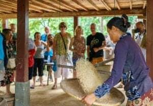 I dag bevæger vi os væk fra turismens hverdag, og kører ud til kanten af Tonle Sap floden. Her hopper vi ombord på en båd, der sejler os til den lokale landsby, Kompong Phluk. Kompong Phluk er et isoleret Khmer samfund, der er sammensat af 3 landsbyer. Alle huser i landsbyen, er bygget på pæle, der alle måler mellem 6-8 meter i højden. De knap 3000 Khmer folk der bor i landsbyen, lever af at fiske og dyrke grøntsager på flydende farme.  Undervejs sejler båden gennem mangroveskove, hvor et spændende dyreliv kan opleves – herunder aber.  Vi forsætter til den lokale landsby, Chansor. Her skal vi overnatte – på samme vilkår som de lokale. Det betyder, at vi får et lokalt homestay (gæsteværelse) til rådighed. Under opholdet, vil der ikke være varmt vand at bade i – og det skal nævnes, at sengetøj ikke bliver skiftet under dagene. Så hold det så rent som muligt.  Vi spiser frokost med vores lokale værtsfamilie, og vores lokalguide hjælper os med eventuelle sprogvanskeligheder. Efter frokosten, deltager vi i et lokalt plastikgenbrugs projekt.  Resten af dagen er i selskab med den lokale værtsfamilie, der glædeligt deler viden om deres kultur og tradition.
