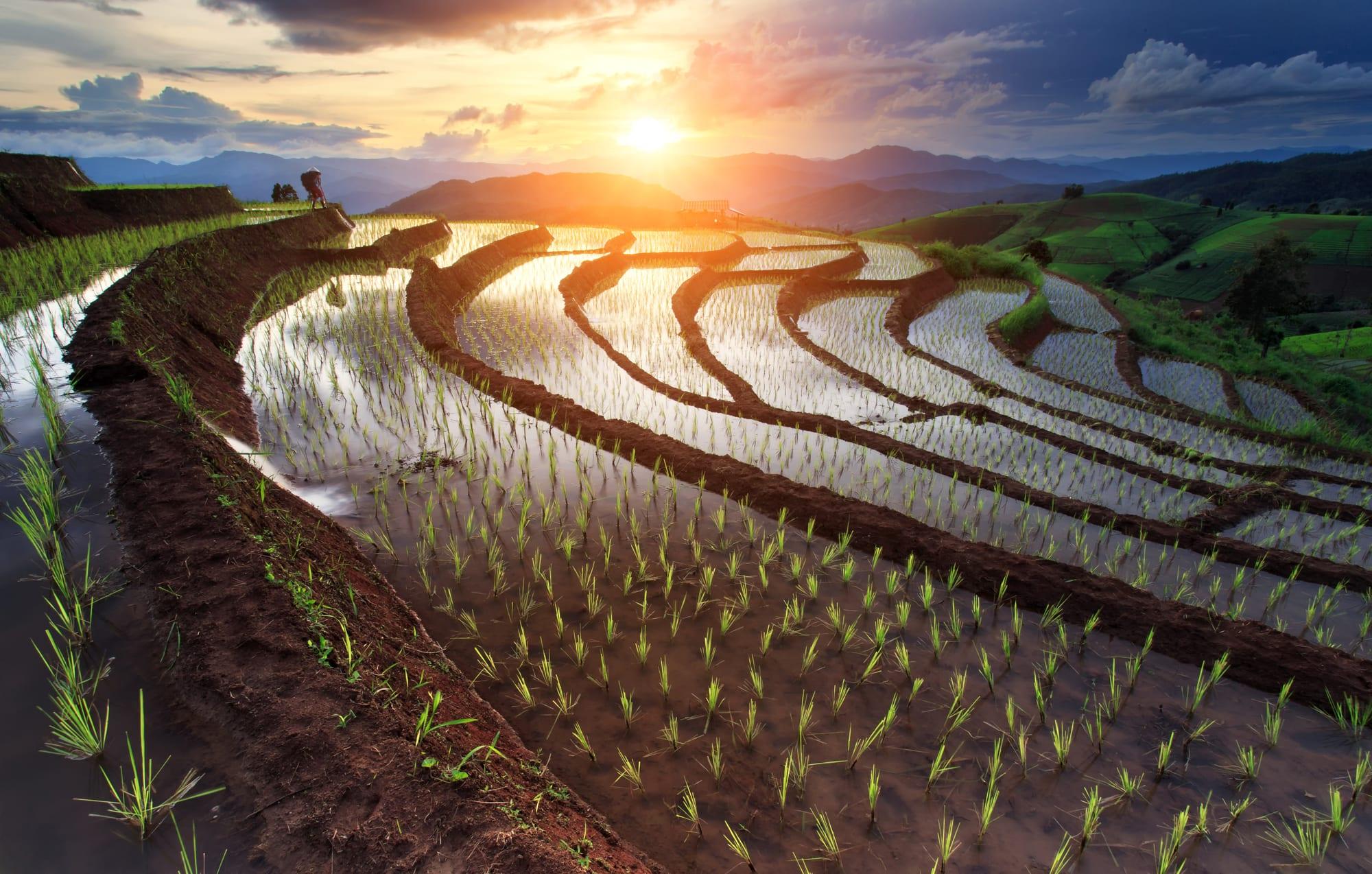 Rundrejse: Vietnam, Cambodia og Thailand