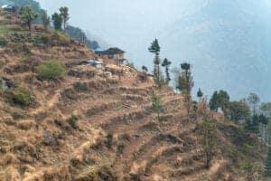Vi starter dagen med en god morgenmad. Herefter tager vi vandreskoene på igen, og bevæger os nedad, indtil vi ankommer til Bhadaure. Her begynder ruten så småt at gå opad, inden vi ankommer til et skovområde. Her vandrer vi det sidste stykke til Kande. Efter ankomst til Kande, bliver vi hentet i bil, og kørt til Pokhara. Vi ankommer til Pokhara efter en køretur på ca. 30 minutter. Trekket er nu afsluttet, og imorgen kører vi mod Chitwan National Park, hvor en spændende safari venter os. Vi overnatter i Pokhara.  <b></b>  <b></b>  <b>Trekking: </b>4 timer <b>Kørsel:</b> 30 minutter <b>Højde:</b> 1400 meter <b>Overnatning:</b> Hotel