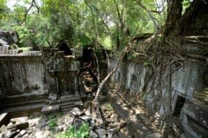 I dag skal du finde din indre eventyrer frem – for vi skal ud og udforske den skjulte, mystiske og smukke tempelruin Beng Mealea, der ligger i udkanten af Angkor-komplekset. Det tager ca. 2 timer at køre dertil – og det er absolut turen værd.  Ingen kan sige ret meget præcist om templets historie, men man mener, at det blev opført i det 12. århundrede. Nu er det overgroet af mos og andre planter – og et yndet sted at tage fede feriebilleder.Der er ikke foretaget noget restaurationsarbejde, og da templet er så gammelt og faldefærdigt, er der anlagt en sti rundt i templet, som man skal følge.