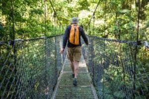 I regnskoven danner en serie af stier et sammenhængende stisystem, som, hvis du når hele vejen rundt, fører dig over 16 broer, heraf en del hængebroer. Broerne er i forskellige højder, og det giver dig muligheder for at opleve regnskoven fra forskellige vinkler. Fra nogle af broerne ser du skoven i fugleperspektiv, hvilket giver nogle helt fantastiske udsiger.  Hotel: Arenal Country Inn