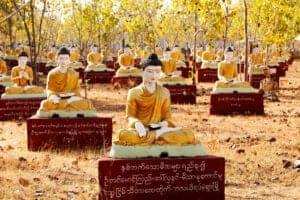 I dag skal vi ud på en 4-timers køretur til Monywa. På vejen stopper vi ved Sagaing, som er en tidligere hovedstad. Rundt omkring byen på bakkerne ligger mange smukke stupaer og klostre, hvoraf det største kloster har en fantastisk udsigt ud over Irrawaddy River. Herfra fortsætter vi til Monywa og Thanboddhay Pagoda, som er smukket med tusindvis af buddhistiske motiver både ind- og udvendigt. Herfra tager vi videre til den unikke pagoda, Bodditatuang, hvor hundredvis af Buddhastatuer sidder i skygge under Banyan-træerne, der gror tæt ved. Ud på eftermiddagen ser vi lokale håndværkere væve bommuldstæpper, inden vi går op og ser solen gå ned fra én af pagoaderne.