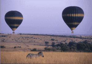 Efter morgenmaden kører vi til den lokale landingsbane i Masai Mara.   Vi flyver kl. 09:10 og ankommer en halv times tid senere til Migori-landingsbanen.  Her bliver vi hentet og kørt til grænsen mellem Kenya og Tanzania, hvor vi gennemgår immigration- og told-proceduren.   Vi er nu i Tanzania.   Kursen bliver sat mod Tarime-landingsbanen, hvor vi kl. 10:30 flyver til Serengeti National Park og Mbuzi Mawe Tented Camp. Her ankommer vi kl. 11:05.  Campen har en kanon placering, når det kommer til game drives og andre valgfrie aktiviteter, såsom luftballonsafari, guidede vandreture og meget mere.   Vi spiser frokost på campen og tager på et game drive om eftermiddagen.