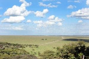Vi bruger endnu en dag i Serengeti.