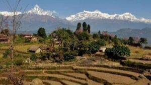 Dagen idag står på en dejlig trekking tur gennem fantastisk landskab. Vores endestation idag bliver landsbyen, Panchase. Undervejs vandrer vi både langs risterasser, gennem lokale landsbyer og flotte skovområder. Når vi kommer frem til Panchase, kan du bestige byens bakke. Her venter dig en fantastisk udsigt til Annapurna bjergene.   <b>Trekking:</b> 6 timer <b>Højde:</b> 2000 meter <b>Overnatning:</b> Homestay