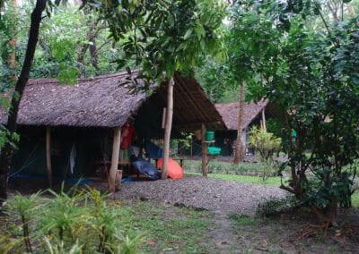 Koshi Tappu Wildlife Camp