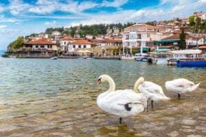Denne dag er på egen hånd i Ohrid – og der er rigeligt at give sig til. Hvad end du ønsker at solbade ved søen, gå rundt i Ohrid og tage fantastiske billeder af de imponerende bygninger med den fantastiske sø i baggrunden eller deltage på en sightseeing tur, er helt op til dig. Uanset hvad, vil du uden tvivl få en masse fantastiske oplevelser og ikke mindst en masse uforglemmelige billeder. Vi overnatter på hotel Mizo.