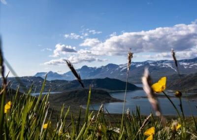 Vandring i Norge: Jotunheimen – Grøn rute